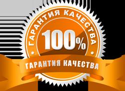 Где взять силы для успеха. Отзывы. Тренинг П.Ракова в Москве.